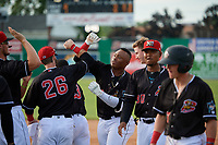 Batavia Muckdogs Albert Guaimaro (13) celebrates with teammates, including Evan Edwards (26), after a walk off single during a NY-Penn League game against the Auburn Doubledays on June 19, 2019 at Dwyer Stadium in Batavia, New York.  Batavia defeated Auburn 5-4 in eleven innings in the completion of a game originally started on June 15th that was postponed due to inclement weather.  (Mike Janes/Four Seam Images)