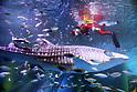 Christmas events at Hakkeijima Sea Paradise aquarium