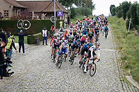 peloton coming down the Haaghoek<br /> <br /> 104th Ronde van Vlaanderen 2020 (1.UWT)<br /> 1 day race from Antwerpen to Oudenaarde (BEL/243km) <br /> <br /> ©kramon