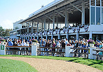 10 March 13: Fans line the paddock before the 12th running of the grade 3 Hillsborough Stakes for fillies and mares three years old and upward at Tampa Bay Downs in Tampa, Florida.