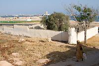 Tripoli, Libya - 19th-Century Protestant Cemetery
