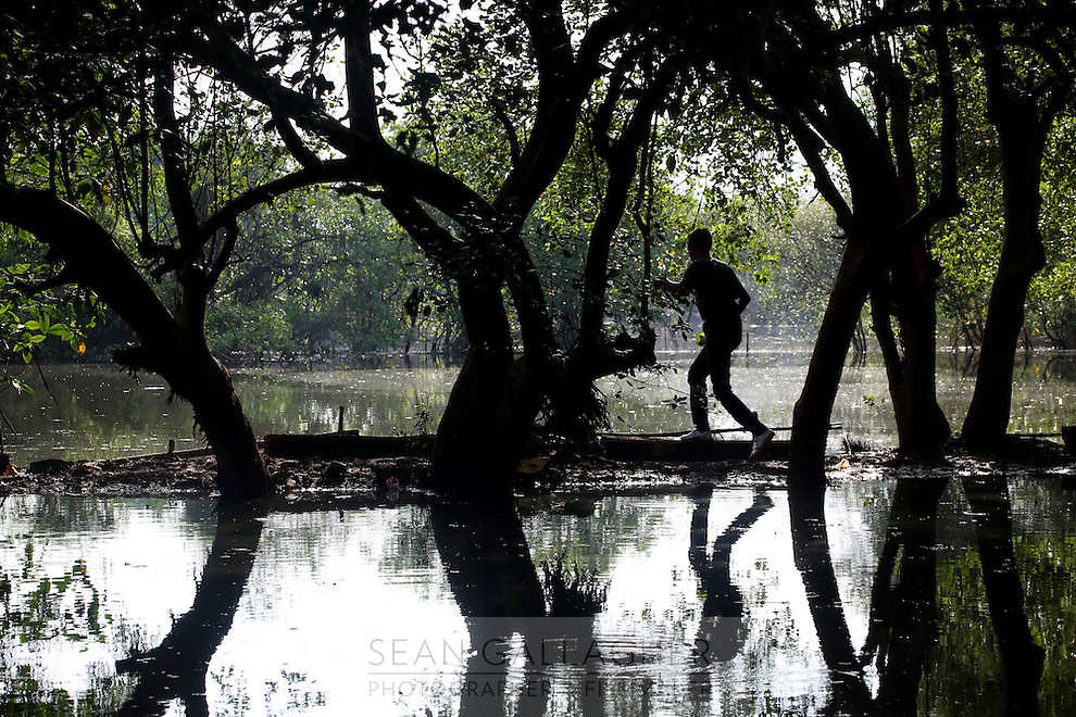 """A man walks through a mangrove forest in the north-west of Jakarta. According to the Jakarta Post, """"it is now only a matter of time before mangroves are totally erased from the map of Jakarta — a victim of unbridled urbanization and industrialization programs initiated by the government""""."""