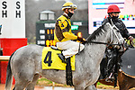 February 28, 2021: Sekani #4 , ridden by Florent Geroux in the Downthedustyroad Breeders Stakes for trainer Brad H. Cox at Oaklawn Park in Hot Springs,  Arkansas.  Ted McClenning/Eclipse Sportswire/CSM