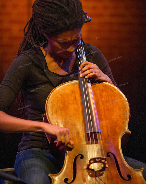 Tomeka Reid plays with Michel Edelin and Dylan van der Schyff at the Roundhouse Performance Centre, June 29, 2014
