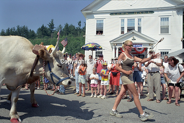 Tammy Allen leads her oxen Garfield and Ode down Main street in Wardsboro Vermont during the July 4th parade. The Oxen are decorated for the parade.