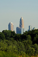The uptown Charlotte skyline is framed with trees in full green color in Charlotte, NC.