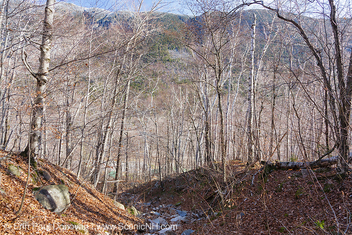 This is the landslide path just above the Willey Boulders in Crawford Notch in Hart's Location, New Hampshire. The Willey Boulders saved the Willey House from destruction on August 28, 1826 when a massive landslide came down Mount Willey. These boulders were located just above the house and caused the landslide to split into two debris flows around the house. The house was said to be untouched, but all seven members of the family and two hired men perished in the slide while trying to escape to a safe area.
