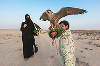 "United Arab Emirates (UAE). Abu Dhabi. Ayesha Matar Al Mansoori and her daughter Osha hold both a falcon on their arms at the training place of Abu Dhabi Falconers Club. Ayesha Al Mansoori is the first woman falconer in the UAE and the only member of the Ladies Falconer Club. She wears a black abaya and a niqab. The abaya, sometimes also called an aba, is a simple, loose over-garment, essentially a robe-like dress, worn by some women in parts of the Muslim world and the Arabian Peninsula. The abaya covers the whole body except the head, feet, and hands. It can be worn with the niqāb, a face veil covering all but the eyes.The muslim women who wear the niqab do so in places where they may encounter non-mahram (non-related) men. Falcons are birds of prey in the genus Falco, which includes about 40 species. Adult falcons have thin, tapered wings, which enable them to fly at high speed and change direction rapidly. Additionally, they have keen eyesight for detecting food at a distance or during flight, strong feet equipped with talons for grasping or killing prey, and powerful, curved beaks for tearing flesh. Falcons kill with their beaks, using a ""tooth"" on the side of their beaks. The United Arab Emirates (UAE) is a country in Western Asia at the northeast end of the Arabian Peninsula. 20.02.2020  © 2020 Didier Ruef"