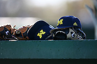 February 20, 2009:  Gloves and hat of the University of Michigan during the Big East-Big Ten Challenge at Jack Russell Stadium in Clearwater, FL.  Photo by:  Mike Janes/Four Seam Images