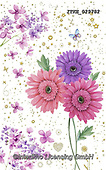 Isabella, NEW FOLDER, paintings+++++,ITKE029782,#New folde, EVERYDAY