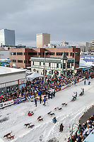 Becca Moore runs down 4th avenue leaving the Ceremonial Start of the 2016 Iditarod in Anchorage, Alaska.  March 05, 2016