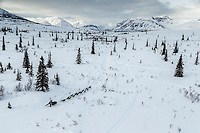 Brent Sass on the trail in the Alaska Range in Ptarmigan Valley on the way to Rohn from the Rainy Pass checkpoint during Iditarod 2016.  Alaska.  March 07, 2016.  <br /> <br /> Photo by Jeff Schultz (C) 2016 ALL RIGHTS RESERVED