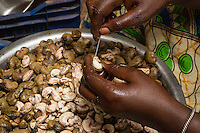 Removing Cashew from Hull at Cashew Nut Processing Center, Group Dimbal Djabott, Mendy Kunda, North Bank Region, The Gambia