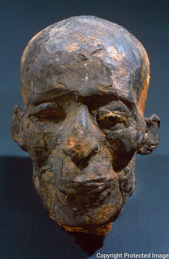 Egyptian Mummies and Coffins:  Head from a male mummy after 1000 BC.  Trustees of the British Museum 1986.  Reference only.