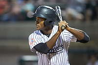 Evan Alexander (58) of the Pulaski Yankees at bat against the Princeton Rays at Calfee Park on July 14, 2018 in Pulaski, Virginia. The Rays defeated the Yankees 13-1.  (Brian Westerholt/Four Seam Images)