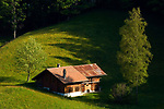 CHE, SCHWEIZ, Kanton Bern, Berner Oberland, Wandergebiet Axalp oberhalb des Brienzersees: Almhuette | CHE, Switzerland, Bern Canton, Bernese Oberland, hiking region Axalp above Lake Brienz: alpine pasture hut