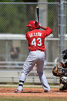 St. Louis Cardinals Alex De Leon (43) during a minor league spring training game against the Miami Marlins on March 31, 2015 at the Roger Dean Complex in Jupiter, Florida.  (Mike Janes/Four Seam Images)