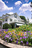 Traditional white House in colonial style, homestead, annual heirloom and old-fashioned flowers of nasturtiums Tropaeoleum, petunias, blue skies, clouds, sunny summer day, bird ornament statutes, trellis