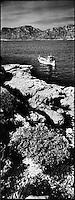 Europe/France/Provence-Alpes-Côte d'Azur/13/Bouches-du-Rhône/Marseille:Gaby le pécheur avce son pointu dans les calanques aux environs des Goudes