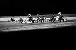 Kartsport Nelson Club Champs