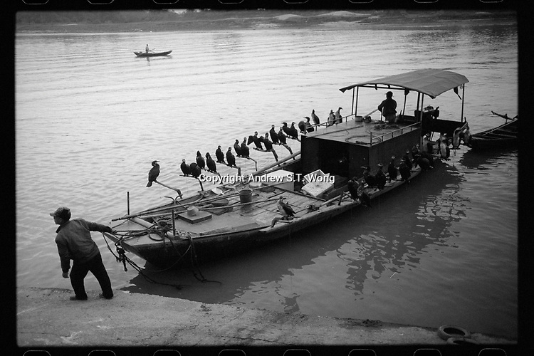 Fishermen return with their cormorants at dusk in Poyang county at Poyang Lake, Jiangxi Province, November 2017. Poyang Lake, located in the north of Jiangxi Province, is the largest freshwater lake in China. It fluctuates dramatically between wet and dry seasons, from 3,500 square kilometres down to about 200 square kilometres. The lake provides a habitat for half a million migratory birds.