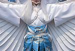 Asia, Japan, Tokyo, Asakusa, White Heron Dance