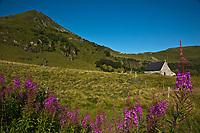 Europe/France/Auvergne/15/Cantal/Parc Naturel Régional des Volcans: Le massif du Puy Mary (1787 mètres) - Pâturages et Gite d'étape d'Eylac
