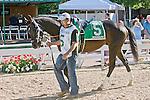 3-7-10: Gone Astray, Cornelio Velasquez up, wins the GIII Salvator Mile Stakes.