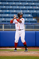 Salem Red Sox designated hitter Roldani Baldwin (19) at bat during the first game of a doubleheader against the Potomac Nationals on June 11, 2018 at Haley Toyota Field in Salem, Virginia.  Potomac defeated Salem 9-4.  (Mike Janes/Four Seam Images)