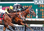 July 29, 2012 Royal Currier (#6) Joe Bravo up, wins the Teddy Drone Stakes at Monmouth Park Racetrack, Oceanport, NJ. Travelin Man is second. @Joan Fairman Kanes/Eclipse Sportswire