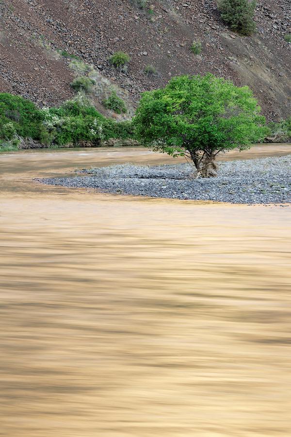 John Day River flowing through desert canyon, north central Oregon, Oregon, USA