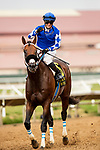 AUGUST 20, 2021: Mo Forza with Flavien Prat wins the Del Mar Mile at Del Mar Fairgrounds in Del Mar, California on August 20, 2021. Evers/Eclipse Sportswire/CSM