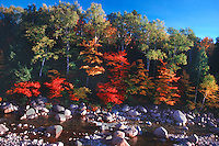Fall Foliage, Kancamagus Highway, White Mountains, New Hampshire. Photogaph by Peter E. Randall