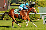 27 August 10: Get Stormy and jocdeky J.J. Castellano winning the Bernard Baruch Handicap at Saratoga Race Course in Saratoga Springs, New York