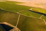 Farmland in Horse Heaven Hills, Washington