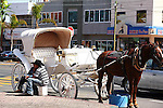 HORSE DRAWN CARRAIGE DRIVER WAITS FOR CUSTOMER ON STREET IN ENSENADA