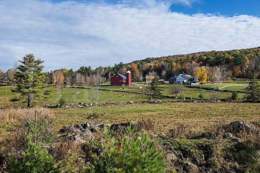 Rustic red barn, Woodstock, Vermont, USA