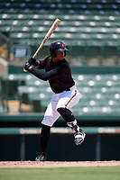 GCL Orioles Frank Tolentino (14) bats during a Gulf Coast League game against the GCL Red Sox on July 29, 2019 at Ed Smith Stadium in Sarasota, Florida.  GCL Red Sox defeated the GCL Pirates 9-1.  (Mike Janes/Four Seam Images)