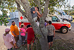 CARRABELLE, FL - OCTOBER 12: Jayce Thompson, 10 years old, sits in a tree and waits as residents line up for food at a Red Cross truck on October 12, 2018 in Carrabelle, Florida. (Photo by Mark Wallheiser/Getty Images)