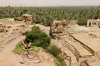 EGYPT, oasis El-Wahat el-Bahariya, Bawiti, well and date palm plantation / AEGYPTEN, Oase Bahariyya, Bawiti, Brunnen und Dattelpalmen