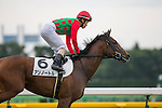 FUCHU,JAPAN-JUNE 25: Un Autre,by I'll Have Another,ridden by Masami Matsuoka,is preparing for the maiden race for 2yo at Tokyo Racecourse on June 25,2016 in Fuchu,Tokyo,Japan (Photo by Kaz Ishida/Eclipse Sportswire/Getty Images)