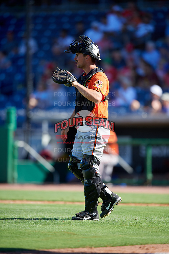 Baltimore Orioles catcher Andrew Susac (27) during a Grapefruit League Spring Training game against the Philadelphia Phillies on February 28, 2019 at Spectrum Field in Clearwater, Florida.  Orioles tied the Phillies 5-5.  (Mike Janes/Four Seam Images)