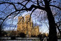 Notre Dame de Paris seen through bare trees at winter during sunset, Paris, France.