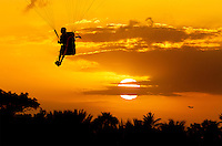 A paraglider soaring over the Pacific Ocean near O'ahu at sunset.
