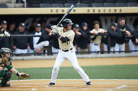 Bruce Steel (17) of the Wake Forest Demon Deacons at bat against the Notre Dame Fighting Irish at David F. Couch Ballpark on March 10, 2019 in  Winston-Salem, North Carolina. The Demon Deacons defeated the Fighting Irish 7-4 in game one of a double-header.  (Brian Westerholt/Four Seam Images)