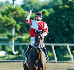 BENSALEM, PA -SEPTEMBER 24: Mike Smith celebrates after winning the Cotillion Stakes on Songbird #5 (red cap) on Pennsylvania Derby Day at Parx Racing and Casino on September 24, 2016 in Bensalem, PA. (Photo by Scott Serio/Eclipse Sportswire/Getty Images)