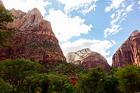 """Zion National Park, Artist signed, limited edition fine art print from the American Splendor series.  Photographed in the American National Parks. Custom edited by the artist, and printed on professional artist canvas. Framed in a custom black wood floater frame.  Size 24x36"""" plus frame.<br /> Price $500<br /> Other proportionate sizes may be available on custom order."""