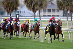 February 21, 2015 :Chocolate Ride with Jesus Castanon up wins the Fairgrounds Handicap at the New Orleans Fairgrounds Risen Star Stakes Day. Steve Dalmado/ESW/CSM