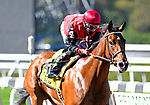 OCT 03, 2020 :  Frank's Rockette with Junior Alvarado aboard, wins the Grade 2 Gallant Bloom Stakes, for fillies & mares, going 6/2 furlongs at Belmont Park, Elmont, NY.  Dan Hearyi/Eclipse Sportswire/CSM