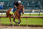April 29, 2021: King Fury gallops in preparation for the Kentucky Derby at Churchill Downs in Louisville, Kentucky on April 29, 2021. EversEclipse Sportswire/CSM